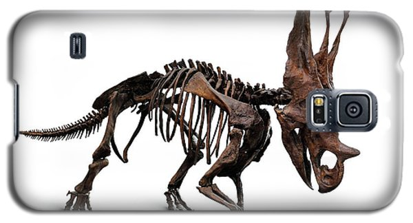 Horned Dinosaur Skeleton Galaxy S5 Case by Oleksiy Maksymenko
