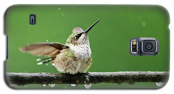 Hummingbird In The Rain Galaxy S5 Case by Christina Rollo