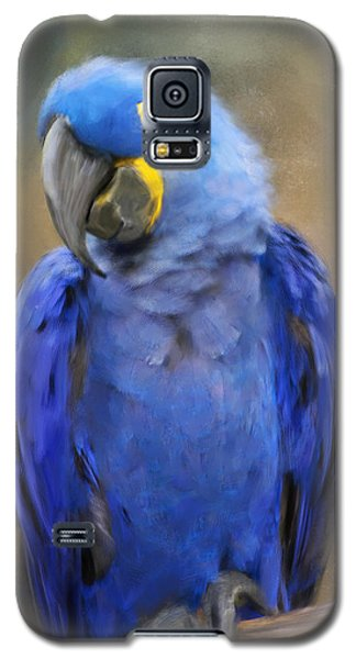 Hyacinth Macaw  Galaxy S5 Case by Jai Johnson