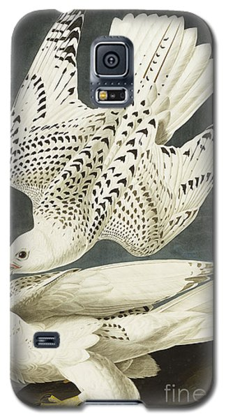 Iceland Or Jer Falcon Galaxy S5 Case by John James Audubon