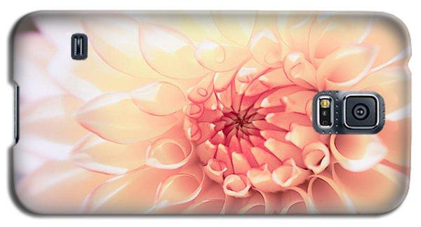 Flower Galaxy S5 Cases - In Love with Dahlia Galaxy S5 Case by Ana V  Ramirez