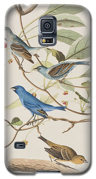 Indigo Bird Galaxy S5 Case by John James Audubon