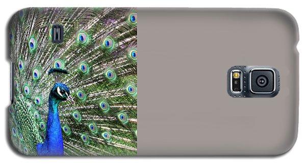 Iridescent Eyes Galaxy S5 Case by Tim Gainey