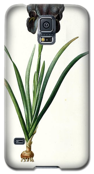Iris Luxiana Galaxy S5 Case by Pierre Joseph  Redoute