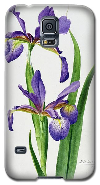 Iris Monspur Galaxy S5 Case by Anonymous