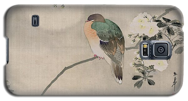 Japanese Silk Painting Of A Wood Pigeon Galaxy S5 Case by Japanese School