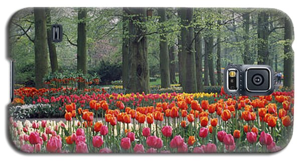 Keukenhof Garden, Lisse, The Netherlands Galaxy S5 Case by Panoramic Images