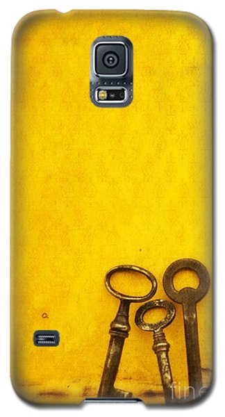 Still Life Galaxy S5 Cases - Key Family Galaxy S5 Case by Priska Wettstein
