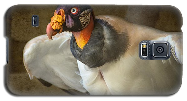 King Vulture Galaxy S5 Case by Jamie Pham