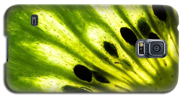 Kiwi Galaxy S5 Case by Gert Lavsen