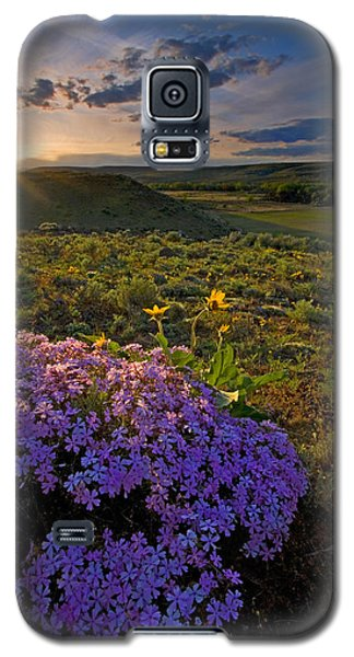 Buy Galaxy S5 Cases - Last Light of Spring Galaxy S5 Case by Mike  Dawson