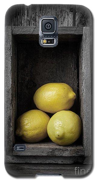 Lemons Still Life Galaxy S5 Case by Edward Fielding