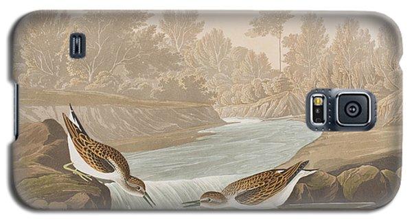 Little Sandpiper Galaxy S5 Case by John James Audubon