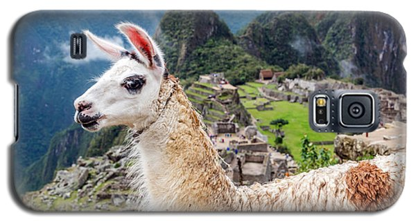Llama At Machu Picchu Galaxy S5 Case by Jess Kraft