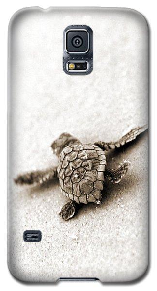 Loggerhead Galaxy S5 Case by Michael Stothard