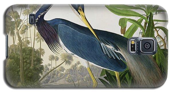 Louisiana Heron Galaxy S5 Case by John James Audubon