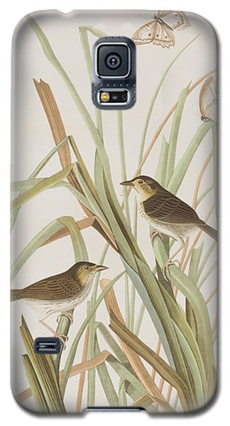 Macgillivray's Finch  Galaxy S5 Case by John James Audubon