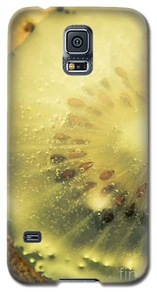 Macro Shot Of Submerged Kiwi Fruit Galaxy S5 Case by Jorgo Photography - Wall Art Gallery
