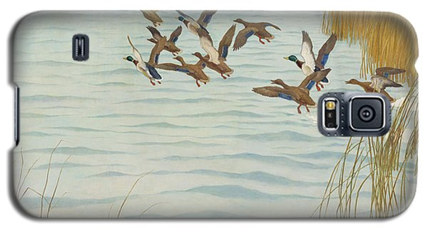Mallards In Autumn Galaxy S5 Case by Newell Convers Wyeth