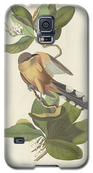 Mangrove Cuckoo Galaxy S5 Case by John James Audubon