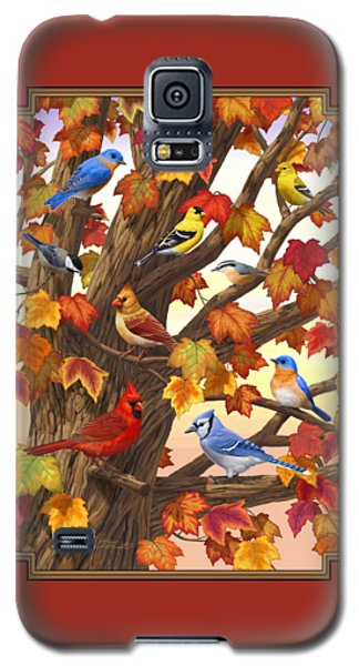 Maple Tree Marvel - Bird Painting Galaxy S5 Case by Crista Forest