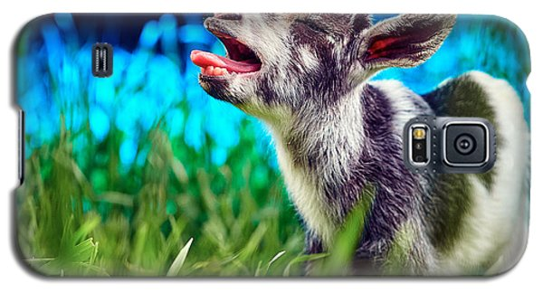 Baby Goat Kid Singing Galaxy S5 Case by TC Morgan