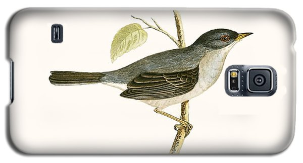 Marmora's Warbler Galaxy S5 Case by English School