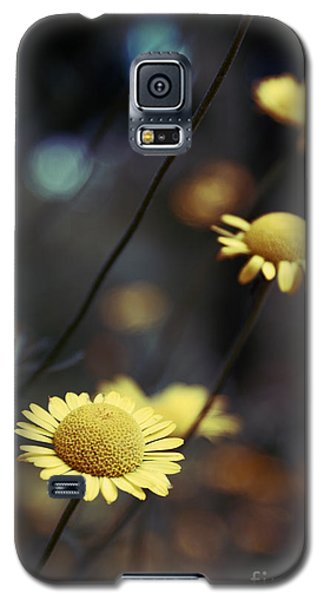 Flower Galaxy S5 Cases - Momentum Galaxy S5 Case by Aimelle