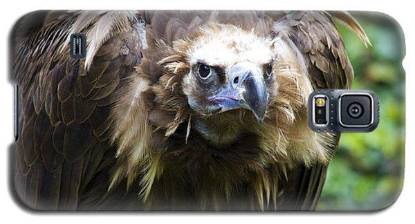 Monk Vulture 3 Galaxy S5 Case by Heiko Koehrer-Wagner