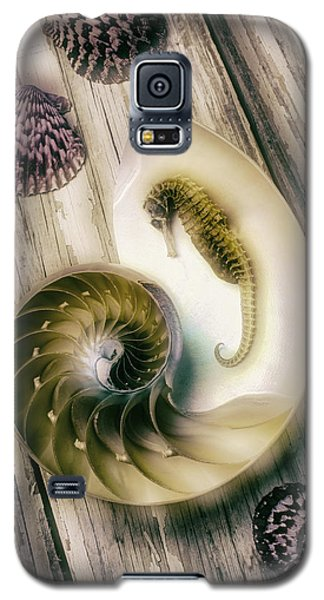 Moody Seahorse Galaxy S5 Case by Garry Gay