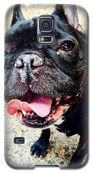 Napoleon Galaxy S5 Case by James Dean