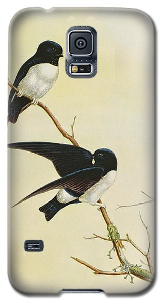 Nepal House Martin Galaxy S5 Case by John Gould