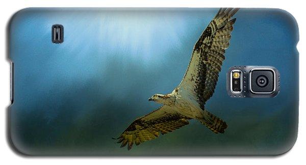 Osprey In The Evening Light Galaxy S5 Case by Jai Johnson