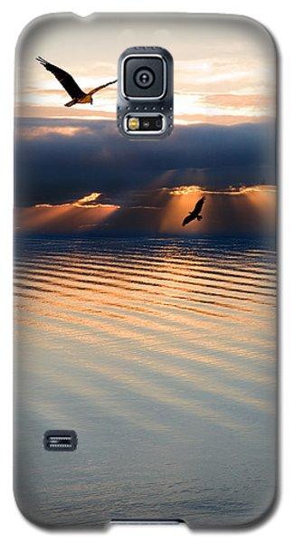 Ospreys Galaxy S5 Case by Mal Bray