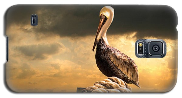 Pelican After A Storm Galaxy S5 Case by Mal Bray
