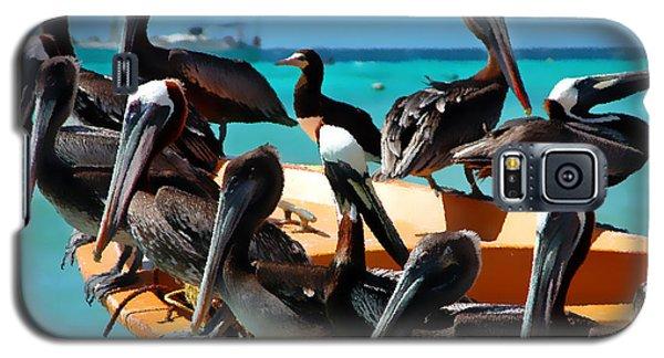 Pelicans On A Boat Galaxy S5 Case by Bibi Romer