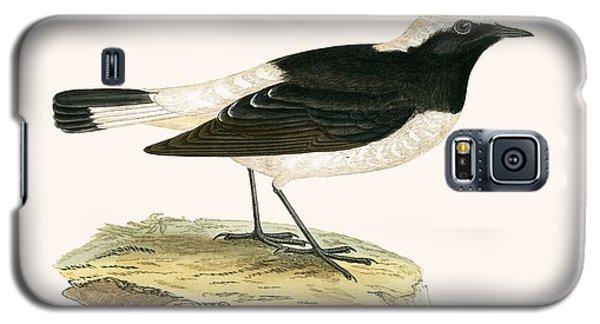 Pied Wheatear Galaxy S5 Case by English School