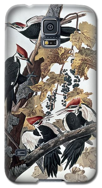 Pileated Woodpeckers Galaxy S5 Case by John James Audubon