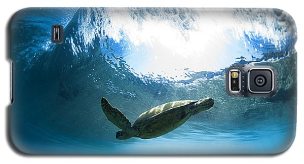 Pipe Turtle Glide Galaxy S5 Case by Sean Davey