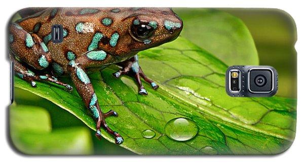 poison art frog Panama Galaxy S5 Case by Dirk Ercken