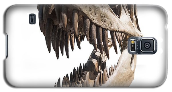 Portrait Of A Dinosaur Skeleton, Isolated On Pure White. Galaxy S5 Case by Caio Caldas