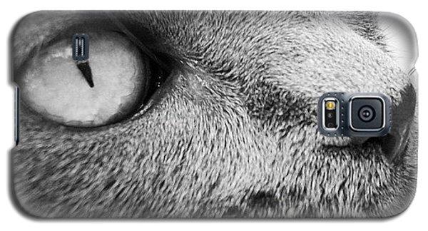 Pout Galaxy S5 Case by Cameron Bentley