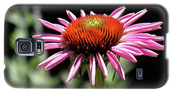 Pretty Pink Coneflower Galaxy S5 Case by Rona Black