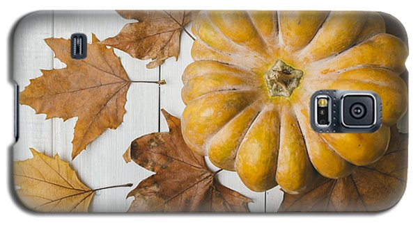 Pyrography Galaxy S5 Cases - Pumkin and maple leaves Galaxy S5 Case by Jelena Jovanovic