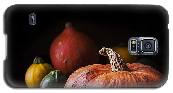Pyrography Galaxy S5 Cases - Pumpkins Galaxy S5 Case by Jelena Jovanovic