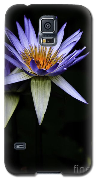 Purple Waterlily Galaxy S5 Case by Avalon Fine Art Photography