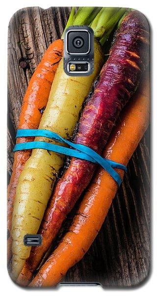 Rainbow Carrots Galaxy S5 Case by Garry Gay