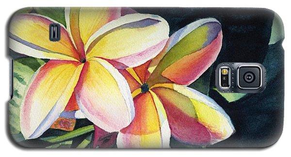 Flower Galaxy S5 Cases - Rainbow Plumeria Galaxy S5 Case by Marionette Taboniar