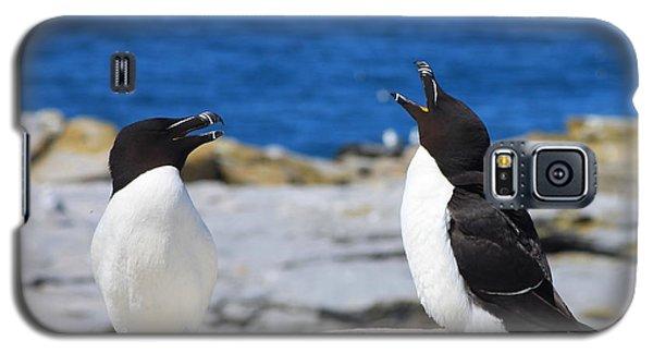 Razorbills Calling On Island Galaxy S5 Case by John Burk
