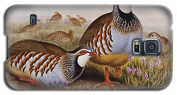 Red-legged Partridges Galaxy S5 Case by John Gould